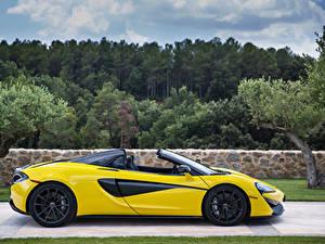 Bilder McLaren Gelb Seitlich Roadster 570s spider Autos