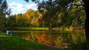 Hintergrundbilder Russland Herbst Wälder See Ast Moscow region Natur