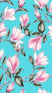 Bilder Magnolien Gezeichnet Textur Ast Blatt Hellblau Rosa Farbe Blüte