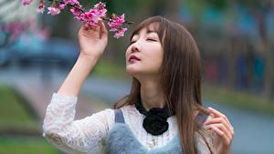 Hintergrundbilder Asiatische Unscharfer Hintergrund Ast Haar Gesicht Süß Braunhaarige junge frau