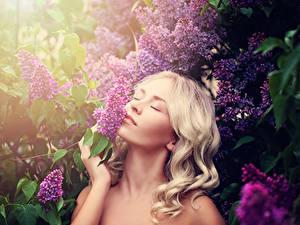 Bilder Flieder Blondine Haar junge Frauen