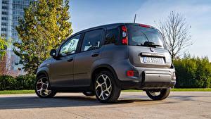 桌面壁纸,,菲亚特,灰色,混合動力車輛,Panda Sport Hybrid, (319), 2020,汽车
