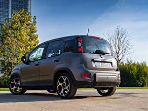 Hintergrundbilder Fiat Grau Hybrid Autos Panda Sport Hybrid, (319), 2020 automobil