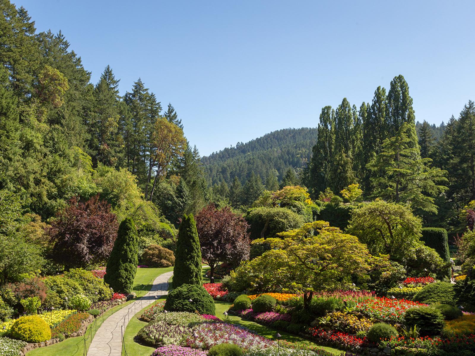 Bilder von Kanada Buchart Gardens Natur Garten Bäume Strauch Design 1600x1200