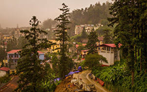 Wallpapers Vietnam Houses Spruce Trees Sapa Cities
