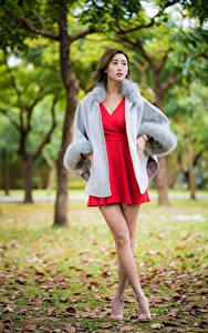 Fotos Asiatisches Bokeh Bein Kleid Rot junge Frauen