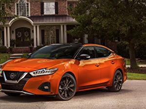Images Nissan Orange Metallic 2019 Maxima SR auto