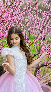 Image Spring Flowering trees Little girls Gown Children