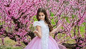 Fonds d'écran Printemps La floraison des arbres Petites filles Les robes Enfants