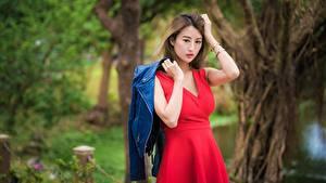 Bilder Asiatische Bokeh Posiert Kleid Jacke Hand Braune Haare Mädchens