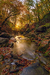 Fotos Russland Krim Herbst Steine Bäume Blattwerk Lichtstrahl Bach Natur