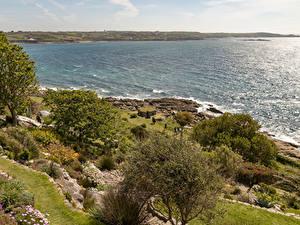 Hintergrundbilder Vereinigtes Königreich Küste Meer Bucht Bäume Strauch St Michael's Mount