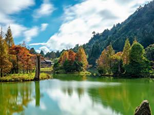 Fotos Taiwan Gebirge Herbst Flusse Bäume Mingchi Natur