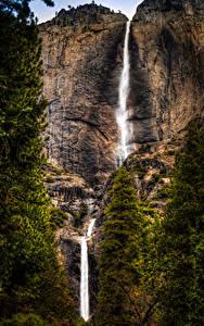 Fotos Vereinigte Staaten Park Wasserfall Yosemite Felsen Natur