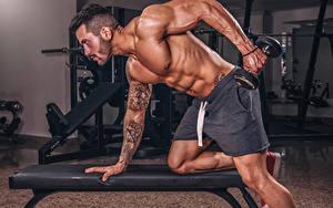 Bilder Bodybuilding Mann Körperliche Aktivität Hanteln Hand Tätowierung Muskeln sportliches