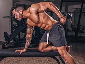 Bilder Bodybuilding Mann Körperliche Aktivität Hanteln Hand Tätowierung Muskeln Sport