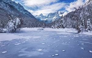 Bilder Landschaftsfotografie Berg Wälder Winter See Slowenien Schnee Alpen Kranjska Gora Lake Jasna Julian Alps