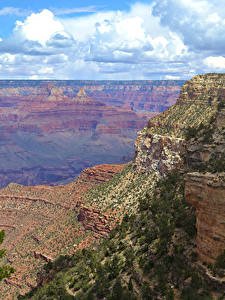 Bilder Grand Canyon Park USA Park Wolke Felsen Natur