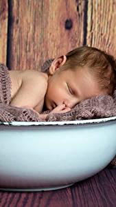 Hintergrundbilder Bretter Säugling Schläft Kinder