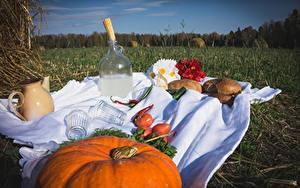 Fotos Kürbisse Brot Wodka Tomate Acker Picknick Trinkglas Flasche