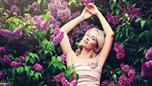 Hintergrundbilder Syringa Blondine Hand Ast Lächeln Mädchens