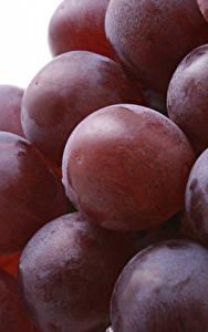 Bilder Hautnah Weintraube Beere