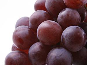 Bilder Großansicht Weintraube Beere das Essen