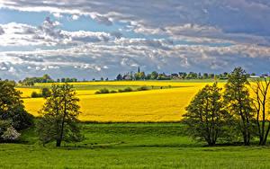 Hintergrundbilder Deutschland Landschaftsfotografie Felder Himmel Raps Bäume Wolke Reckershausen