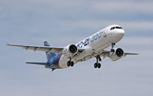 Bilder Flugzeuge Verkehrsflugzeug Russische MS-21-300 Luftfahrt