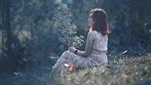 Fotos Asiatische Gras Braune Haare Sitzend junge frau