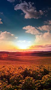 Fotos Landschaftsfotografie Sonnenaufgänge und Sonnenuntergänge Himmel Acker Wolke