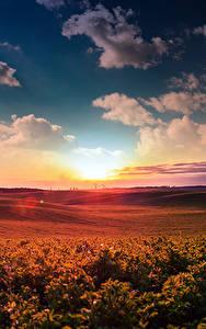 Fotos Landschaftsfotografie Sonnenaufgänge und Sonnenuntergänge Himmel Felder Wolke