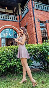 Desktop hintergrundbilder Asiatische Posiert Kleid Bein Mädchens