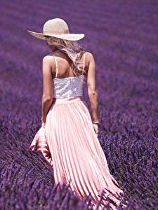 Hintergrundbilder Felder Lavendel Hinten Der Hut junge frau