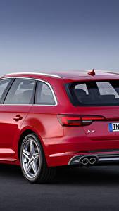 Hintergrundbilder Audi Rot Hinten Kombi Metallisch TDI quattro Avant, 2015 S line Autos