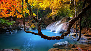 Pictures Tropics Thailand Waterfalls Autumn Branches