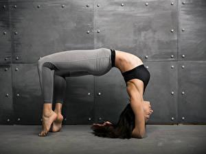 Hintergrundbilder Fitness Trainieren Bein Braune Haare Mädchens Sport