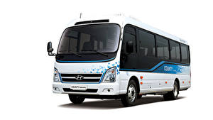 Fotos Hyundai Omnibus Weißer hintergrund County Electric, 2020 automobil
