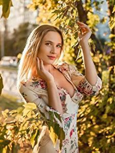 Fotos Georgiy Dyakov Blond Mädchen Ast Blatt Kleid Hand Blick junge Frauen