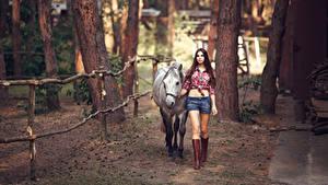 Hintergrundbilder Pferd Braune Haare Shorts Hemd Stiefel Mädchens Tiere
