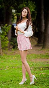 Bilder Asiaten Braune Haare Bein Rock Bluse Starren junge frau