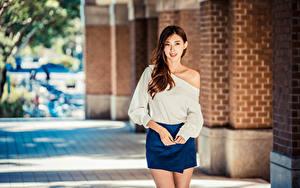 Hintergrundbilder Asiaten Braunhaarige Rock Hand Bluse Blick Mädchens