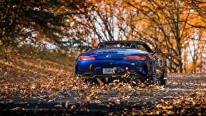 Picture Mercedes-Benz Blue Leaf Back view Roadster AMG 2018 GT C