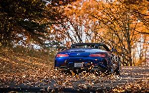 Bilder Mercedes-Benz Blau Blatt Hinten Roadster AMG 2018 GT C Autos