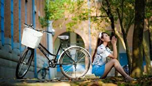 Fotos Asiatische Sitzt Posiert Unscharfer Hintergrund Fahrräder Weidenkorb junge Frauen