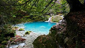 Fotos Spanien Laubmoose Bach Navarra Natur