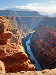 Fotos Grand Canyon Park USA Park Gebirge Flusse Canyon Felsen Natur