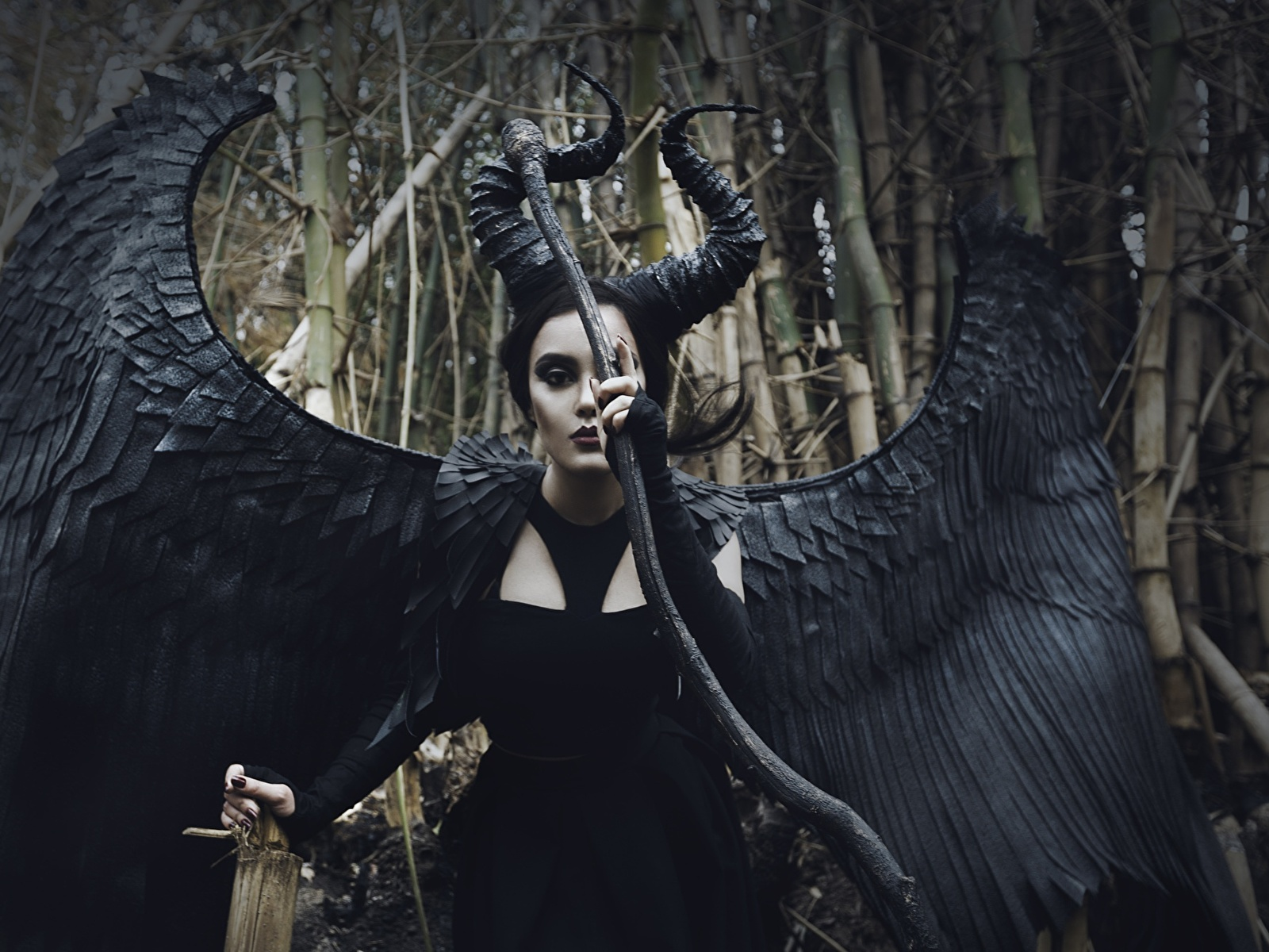 Wallpaper Cosplayers Wings Maleficent Girls Fantasy 1600x1200
