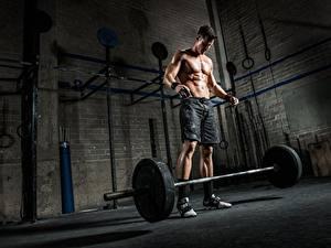 Fotos Mann Bodybuilding Hantelstange Shorts Sport