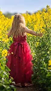 Fotos Raps Kleine Mädchen Blondine Kleid Hinten kind